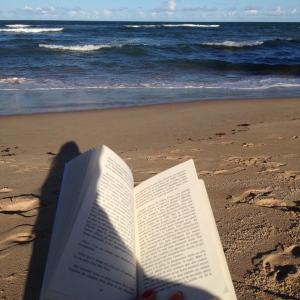 Livro Journaux de Voyage de Camus na paisagem de Itacimirim, Bahia